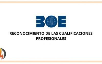 Reconocimiento de las cualificaciones profesionales